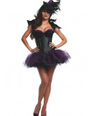 Womens Ravishing Raven Costume buy now