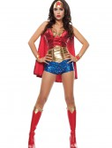Women's Wonder Lady Costume buy now