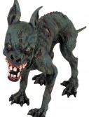 Zombie Dog buy now