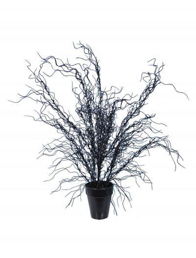 20'' Black Weeping Tree buy now