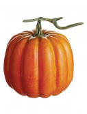 6.5 inch Weighted Pumpkin with Vine buy now