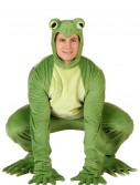 Adult Deluxe Frog Costume buy now