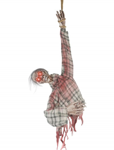 Animated Ghoul Torso buy now