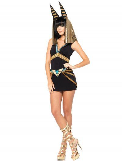 Anubis Adult Costume buy now