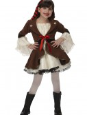 Child Pirate Princess Costume buy now