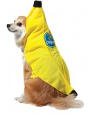 Chiquita Banana Dog Costume buy now