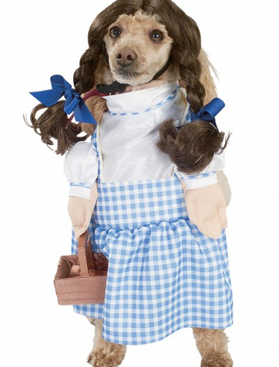 Dorothy Dog Costume buy now