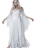 Haunting Beauty Costume buy now