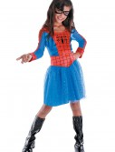 Kids Spider Girl Costume buy now