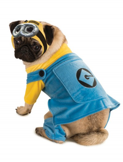 Minion Pet Costume buy now
