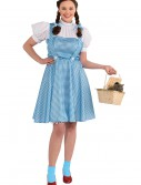 Plus Size Adult Dorothy Costume buy now