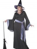 Plus Size Glamour Witch Incantasia Costume buy now