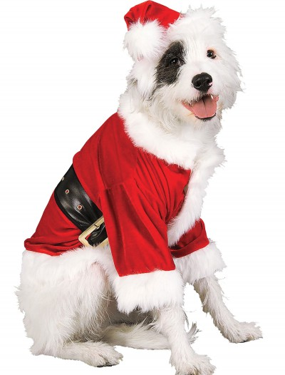 Santa Pet Costume buy now