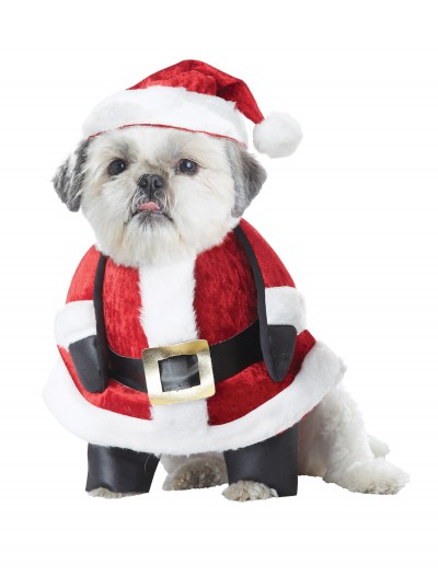 Santa Pup Dog Costume buy now