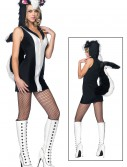 Sexy Skunk Costume buy now