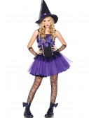 Teen Wicked Witch Costume buy now