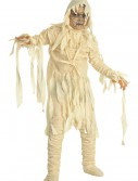 The Mummy Child Costume buy now