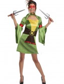 TMNT Adult Geisha Raphael Costume buy now