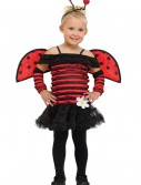 Toddler Little Lady Bug Costume buy now